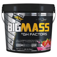BigJoy Sports BigMass GH Factors 5000 Gr