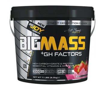 BigJoy Sports BigMass GH Factors 5000 Gr