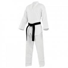 Cyclone Taekwondo Takım