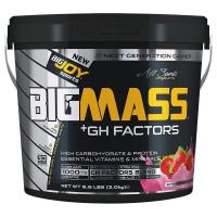 BigJoy Sports BigMass GH Factors 3000 Gr